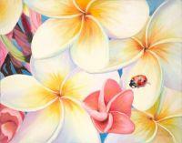 plumeria lady bug