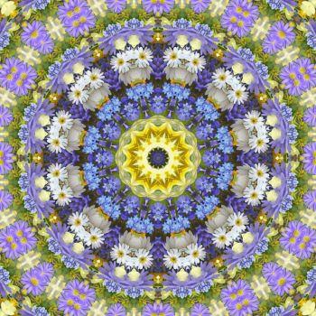 kaleidoscope 319 daisies 2 small
