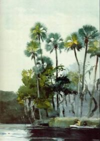 "Winslow Homer, ""Homosassa River, Florida"", 1904, Watercolor"