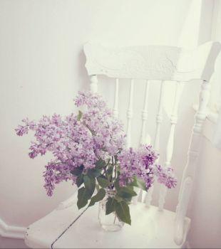 Lilacs 1
