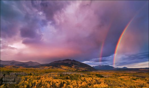 rainbow and aspens, Colorado