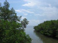 Safey Harbor Florida