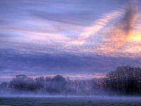 Saturday Morning Mists