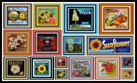 Just sunshine and happiness - Vintage Floral Fruit Crate Labels