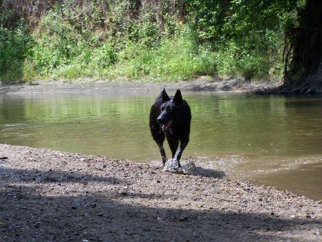 Rita u vody 2