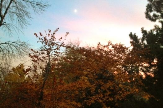 October moon in pink sky--Colorado
