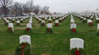 Arlington Christmas Wreaths