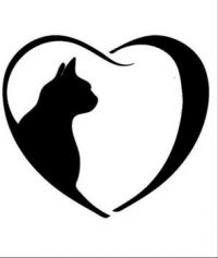 Love cats!