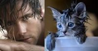 Men and cats (or cats and men)