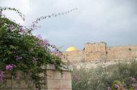 Doors - JERUSALEM