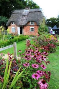 English Thatched