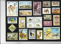 Camel Stamps