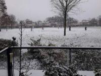 De eerste sneeuw van 2021 in het Laurapark