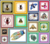 The bugs are out in my world - a collection of Bug Brooches