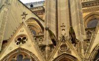 Notre Dame. París.