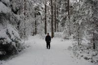 Winter walk....Highland Scotland