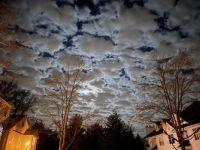 Winter night sky in Princeton