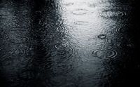 rain_by_phranzee