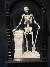 Porcelain skeleton - Minton factory museum, Germany.