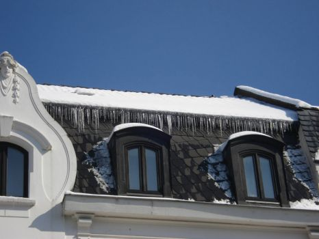 splendid icicles