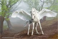 Pegasus (Ex. Large)