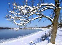 Vinteridyl