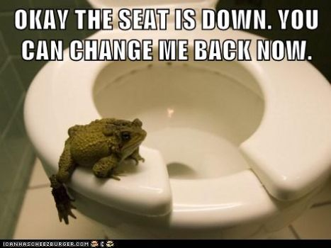 Raymond had to learn his lesson the hard way...He never left the seat up again!!!