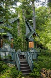 Living in the forest