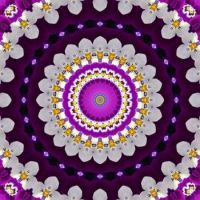 kaleidoscope 386 purple and white small