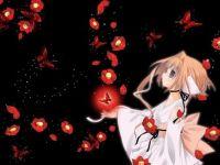 butterfly sakura