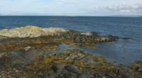 tip of Gigha