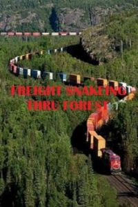 freight train snakes thru forest.