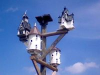 Birdhouses . .