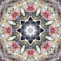 kaleidoscope 77 last one before holidays medium