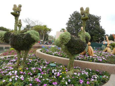cool topiary