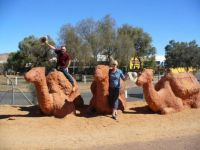 A camel ride at Alice Springs