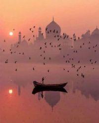 A different view , Taj Mahal, India 🇮🇳