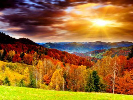 autumn-colors-wallpaper