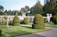 NICE TOPIARY AT ABBOTSFORD HOUSE