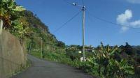 068-Madeira