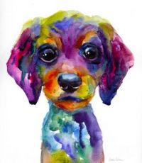 Color puppy - large