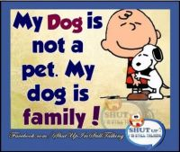 Pets are family