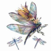 Fairy and dragonfly