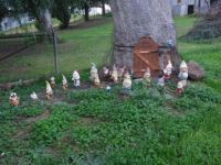 House of gnomes