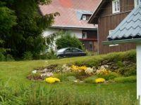 Skalka - rock garden