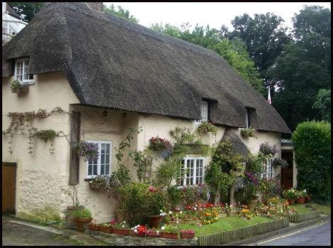 Lovely thatched cottage in Dorset