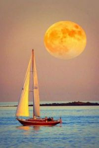 Sailing Home by Moonlight...