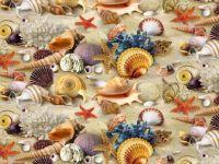 Puzzle #21...Shells