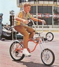 Did you ever have a Schwinn Sting-Ray bike?