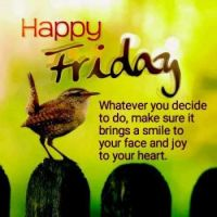 Good Morning - Happy Friday!
